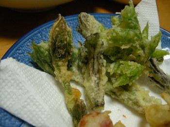 山菜の天ぷら.JPG
