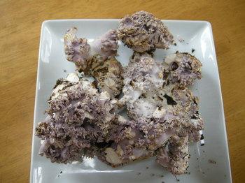 紫ホウキ茸.JPG