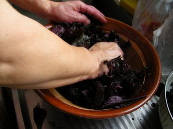 紫蘇の葉搾り.JPG